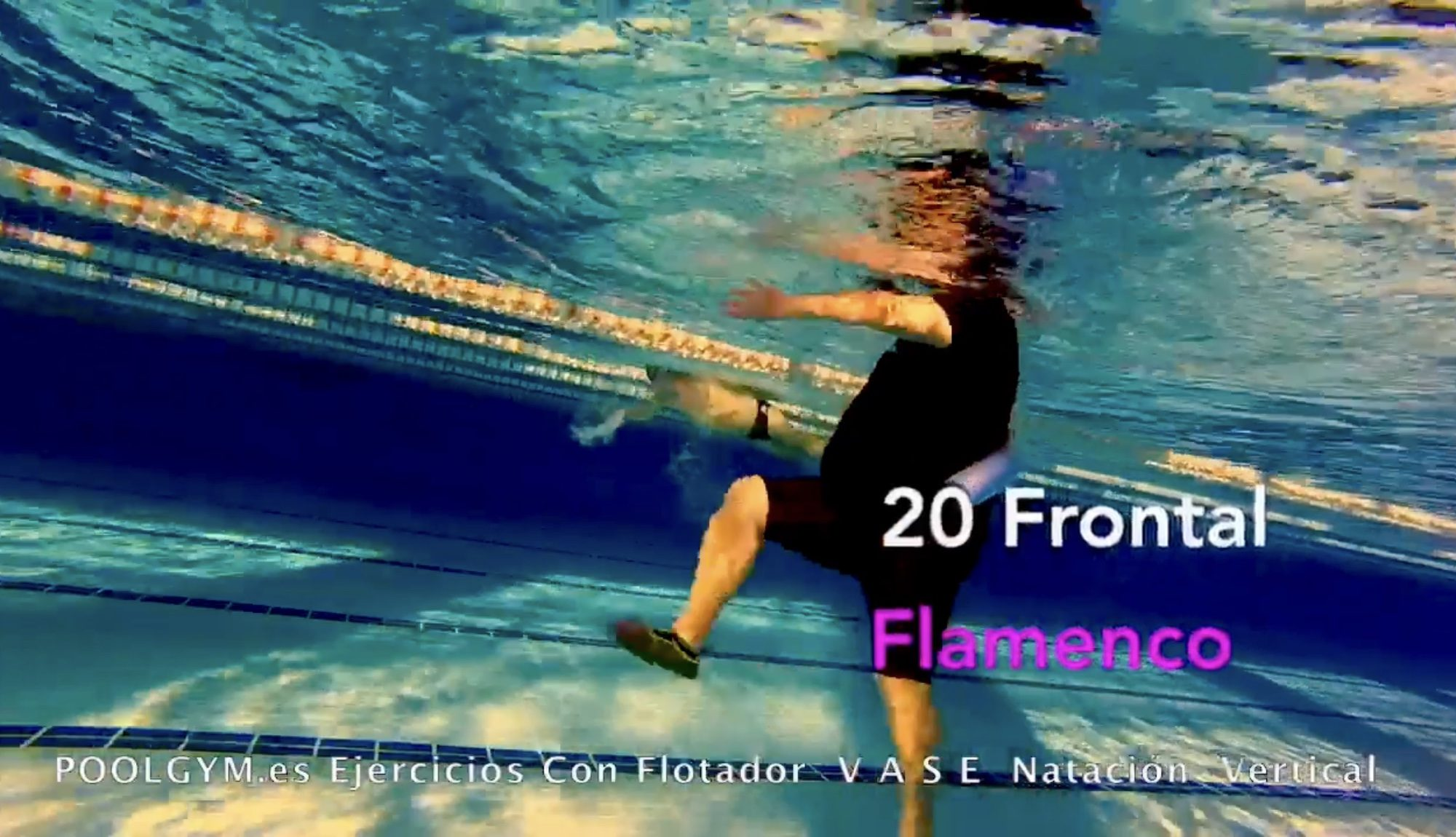 20 Frontal FLAMENCO poolgym.ES