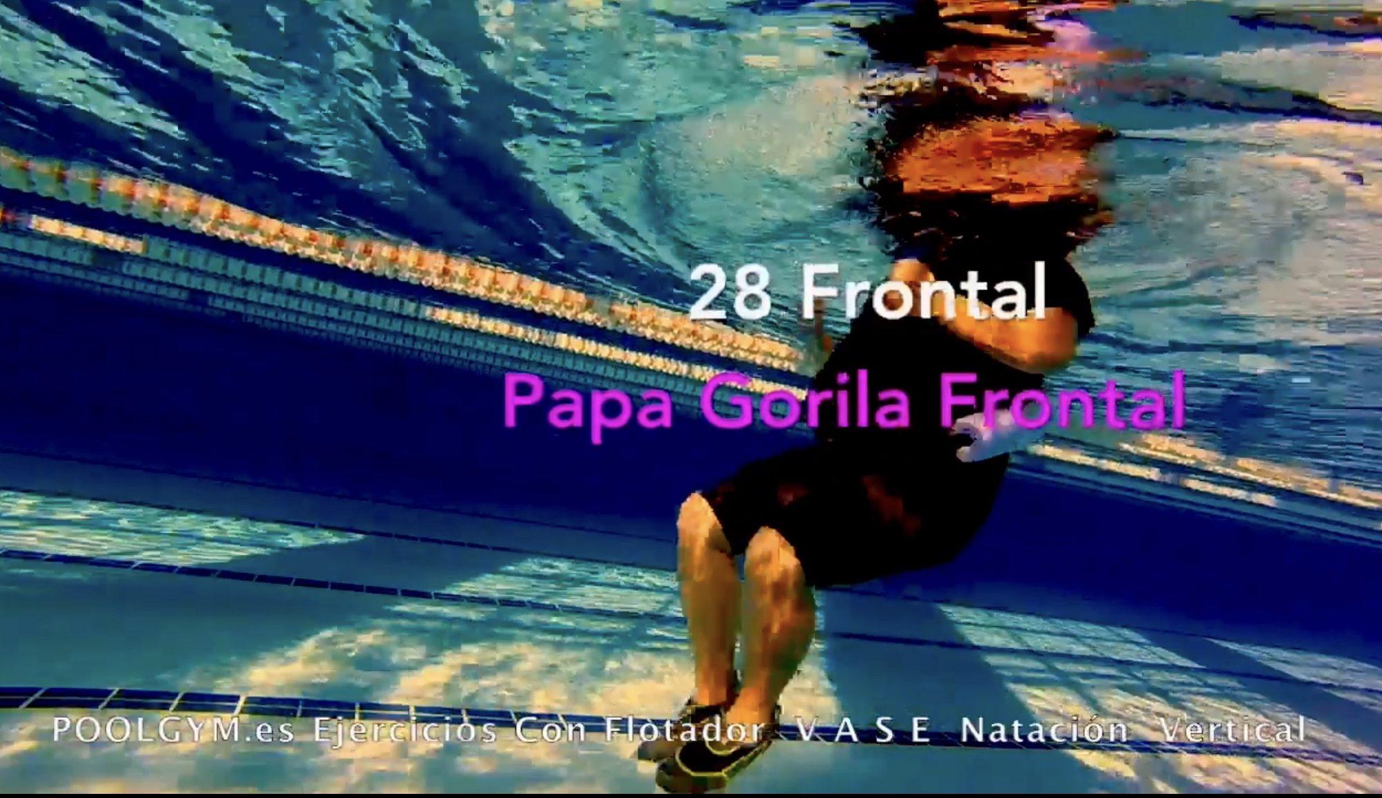 28 Frontal PAPA GORILA poolgym.ES